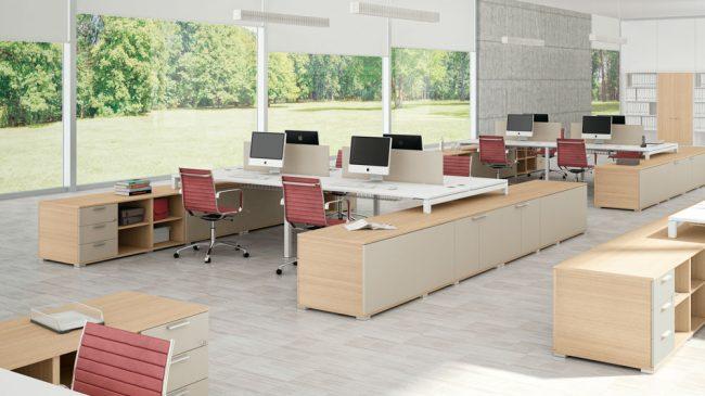 Creare un ambiente stimolante in ufficio: come aumentare la produttività
